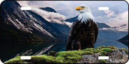 American Eagle with Mountains Car Tag-0