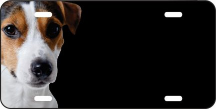 Jack Russell Car Tag-0