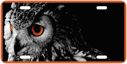 Owl Tag Monogram Car Tag-0