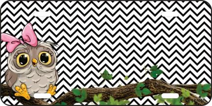 Owl with Chevron in the Background -0
